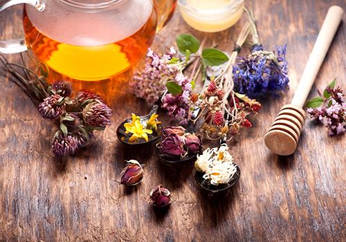 phytotherapie Pharmacie de la Poste Melle